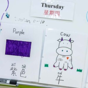 Classroom labels with English and Mandarin words for Thursday, Purple and Cow